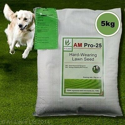 5kg Top Quality Grass Seed / Lawn Seed - (A1LAWN AM Pro-25 Super Tough / - 142