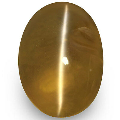 3.34-Carat Beautiful Honey-Colored Chrysoberyl Cat's Eye with Sharp Ray (IGI)