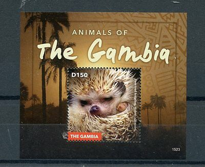 Gambia 2015 MNH Animals of Gambia 1v S/S Wild Animals Mammals Hedgehogs Stamps