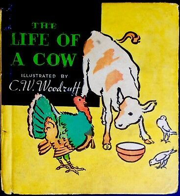 THE LIFE OF A COW By Windsor ~ Rare 1930's Whitman Children's Book 1st Ed