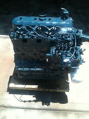 Kubota V2203 Diesel Engine Fully Rebuilt 1 year Wty Bobcat, Thomas, Case, ScatTr