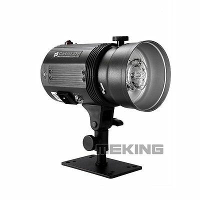 Meking 250W 250T 220V Photo Studio Strobe Professional Flash Corona Monolight