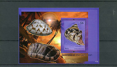 Nevis 2011 MNH Seashells of Caribbean 1v S/S II Shells Marine Stamps