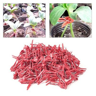 Durable Household Gardening Tools 100pcs Durable Plastic Grafting Clips