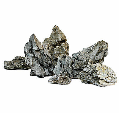 1 kg Mini Landschaft Seiryu Stein Minilandschaft Aquariendekoration Aquascaping