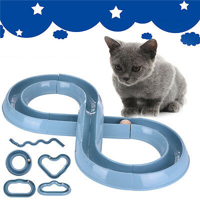 Cat Toy Chase Play Track Roller Circuit Interactive Toy for Pet Kitten Trainning