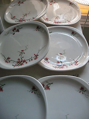 """6 SYRACUSE CHINA Trend Fred Harvey """"Berkeley"""" Plates- 8.25""""- Pink Blossoms"""