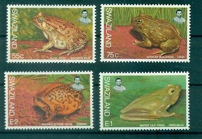 Crapauds & Grenouilles - Toads & Frogs Swaziland 1998