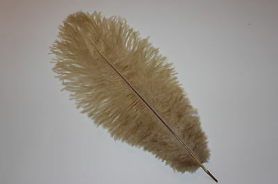 10 First Grade Old Gold Ostrich Blondene Feathers 350-400 mm length ( 14-16 INCH