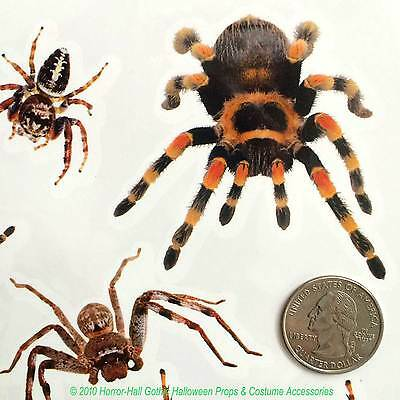 Realistic Punk TARANTULA SPIDERS Temporary Fake Tattoos Gothic Costume Makeup FX