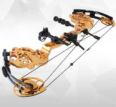 Pro 35-55 lbs Archery Compound Bow Hunting Right Hand Ultimate Hunting Combo Kit