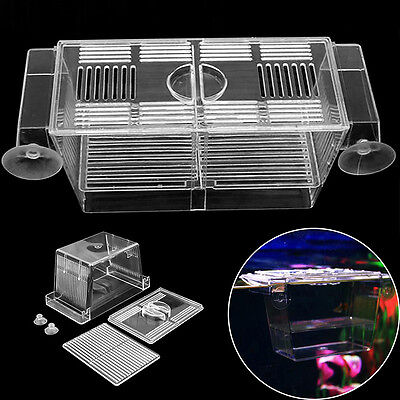 Aquarium Pet Fish Tank Guppy Double Breeding Breeder Rearing Box Hatchery S/L