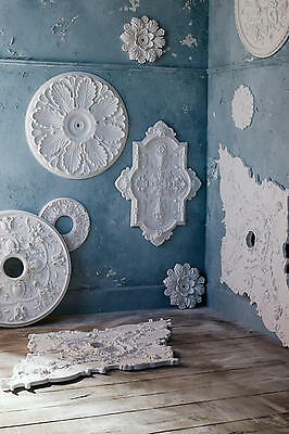 New Anthropologie Home Scrollwork Round Ceiling Architecture Medallion