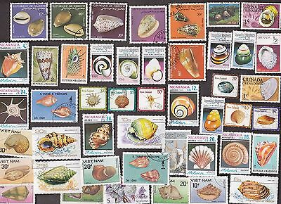 60 All Different SHELLS & SHELLFISH on Stamps