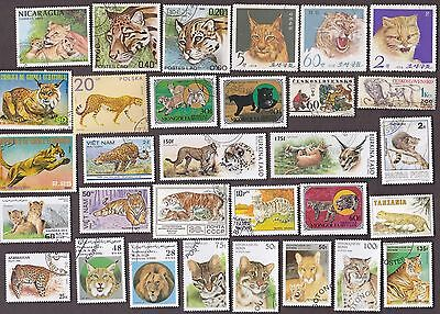 75 All Different BIG & WILD CATS on Stamps