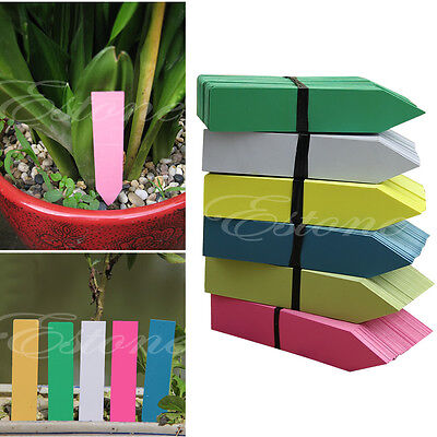 100Pcs Plastic Garden Pot Plant Seed Labels Nursery Stake Tags Signs--5 Colors
