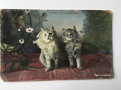 "Vintage Postcard - Animals - Cats - Landor - ""First duet""  # 5532/1"