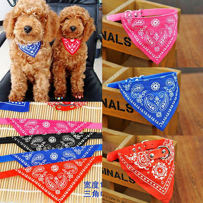 Pet Dog Cat Neck Scarf Bandana with Leather Collar Neckerchief Adjustable ilove