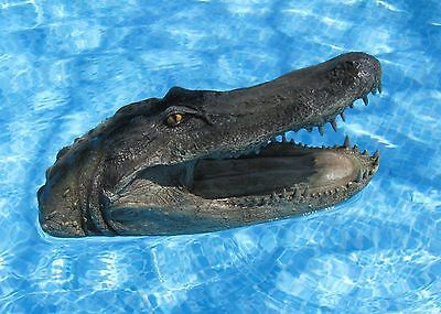 Floating Alligator Head FLoats in pool or pond