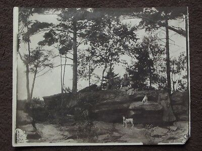 JACK RUSSELL TERRIER'S & WOMEN ON THE ROCKS Vintage 1900's PHOTO
