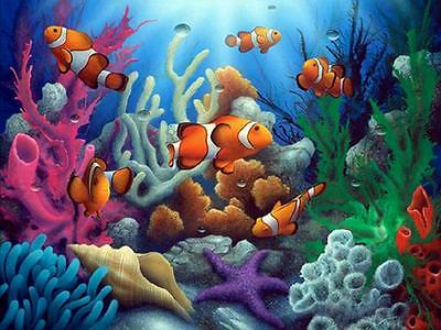 """DIY Paint By Number 16""""*20"""" Kit Colorful Fish On Canvas With Nice Box"""