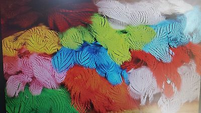 """SILVER PHEASANT """" 12 colors body feathers strung """" fly tying    FREE SHIPPING"""