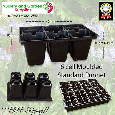 6 cell Seedling Punnet Standard Black Moulded Thick Plastic - Propagation