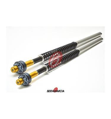 Hydraulic Cartridge Fork Andreani Yamaha Mt09 / Mt 09 Tracer 2013 2014 2015 2016