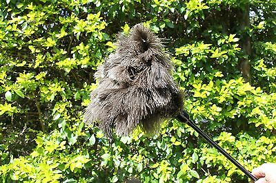 One ( 1)  Soft Floss Grey Ostrich Feather Duster 660Mm 26 Inch First Grade