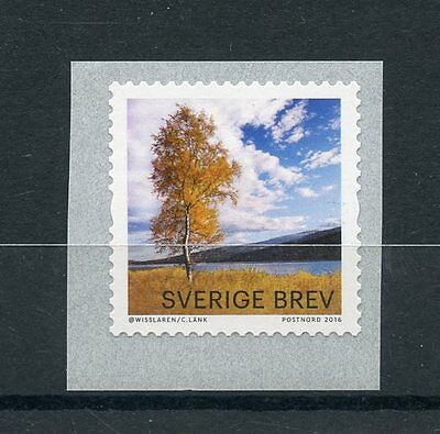 Sweden 2016 MNH Autumn Colours Yellow Birch 1v S/A Set Coil Trees Stamps