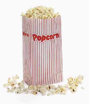 Popcorn Paper Bags / 24 Bags / PARTY SUPPLIES / MOVIES (3/285)