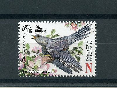 Belarus 2014 MNH Common Cuckoo Bird of the Year 1v Set Birds Birdlife Int Stamps