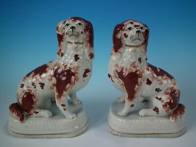 Rare pair Staffordshire spaniels on bases