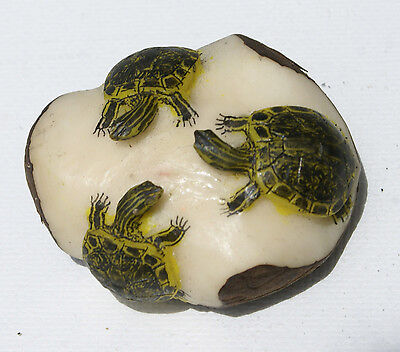 Three Turtles Hand Carved of Tagua Nut Carving Statues Wounaan Panama Art Crafts