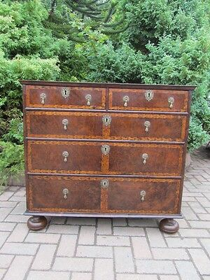 Rare & Outstanding William & Mary Burr Yew Wood Chest of Drawers