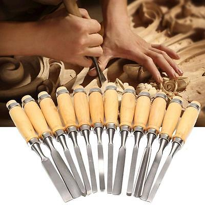 12 Piece  Wood Carving Chisel Tool Set - Sculpture Carpentry Model Making