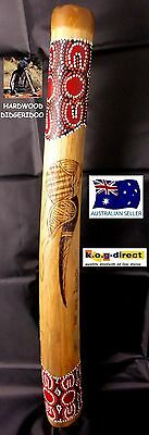 Didgeridoo Burnt Hardwood 60Cm Aboriginal Beautifully Hand Painted New Brn