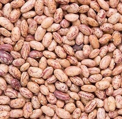 Certified Organic Pinto Beans 1kg