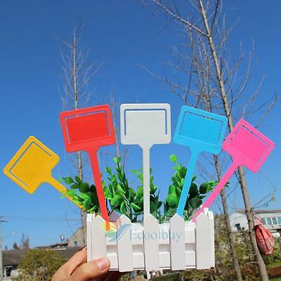 A#S0 10Pcs Colorful Plant Pot Markers Garden Stake Seed Tag Nursery Tie Flower L