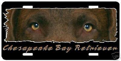 "Chesapeake Bay Retriever "" The Eyes Have It "" Lic Plate"