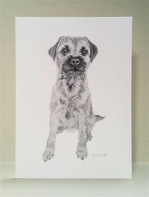BORDER TERRIER DOG - LARGE GREETINGS CARD -From Pencil Drawing By Joanne T Kell