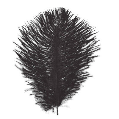 5 First Grade Black  125-15 Mm Quality Ostrich Feather Hurl For Fly Fishing