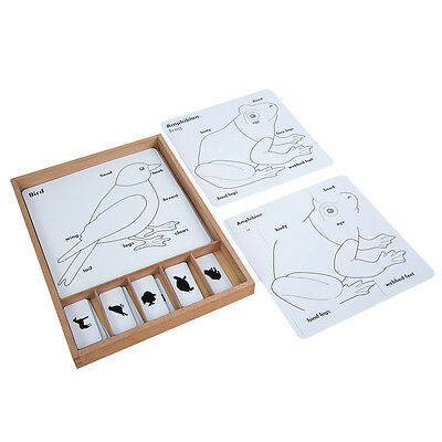 Montessori ANIMAL PUZZLE ACTIVITY SET (BO029)
