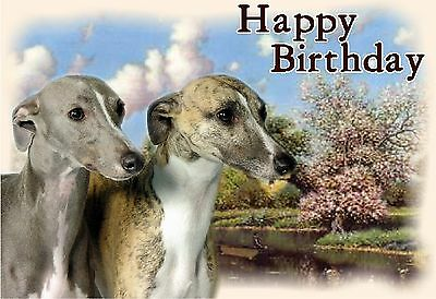 Whippet Dog Design A6 Textured Birthday Card BDWHIPPET-2-DUO by paws2print