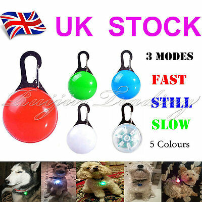 Pet Cat Dog Safety LED Clip Buckle Night Light Flashing Collar Pendant Neon New