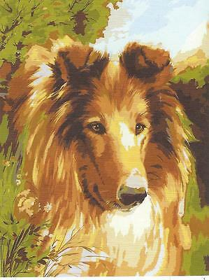 RARE PORTRAIT OF A COLLIE needlepoint tapestry to stitch - 40 X 50. IN RUN OUT!