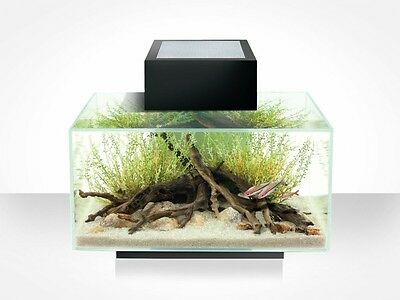 Askoll Fluval Edge 23 L - Kit Acquario