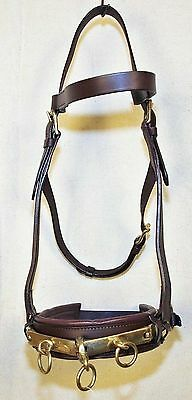 New Horse Size Padded Leather Adjustable Lunge Caveson Solid Brass Hardware