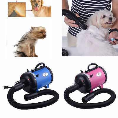 2800W Pro Multi Use Pet Dog Hair Dryer Blower Hairdryer Duster Air Pump Grooming