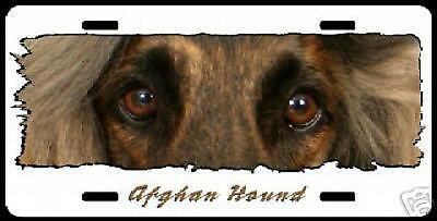 """Afghan Hound on  White  """"The Eyes Have It """"  Lic Plate"""